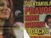 ceca-cacak-koncert-3-novine