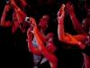 ceca-sidnej-australija-koncert-dec-2010-001
