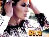 ceca-stara-pozadina-poster-wallpaper-za-desktop-1024x768